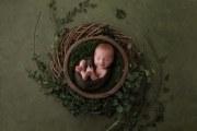 Newborn-1-1