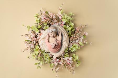 newborn photography pink wreath