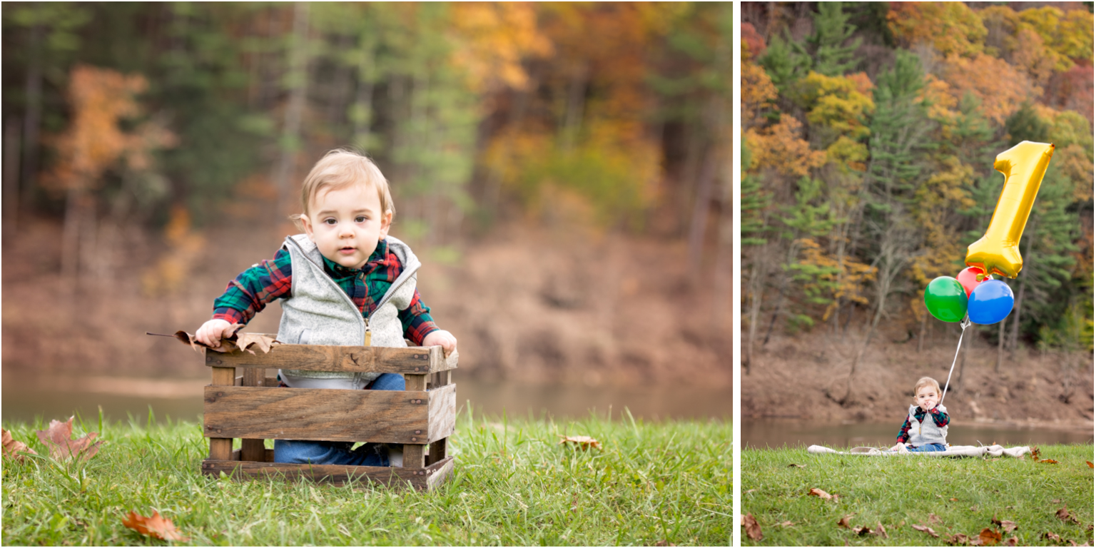 Pine creek Family photographer williamsport Jersey shore first birthday