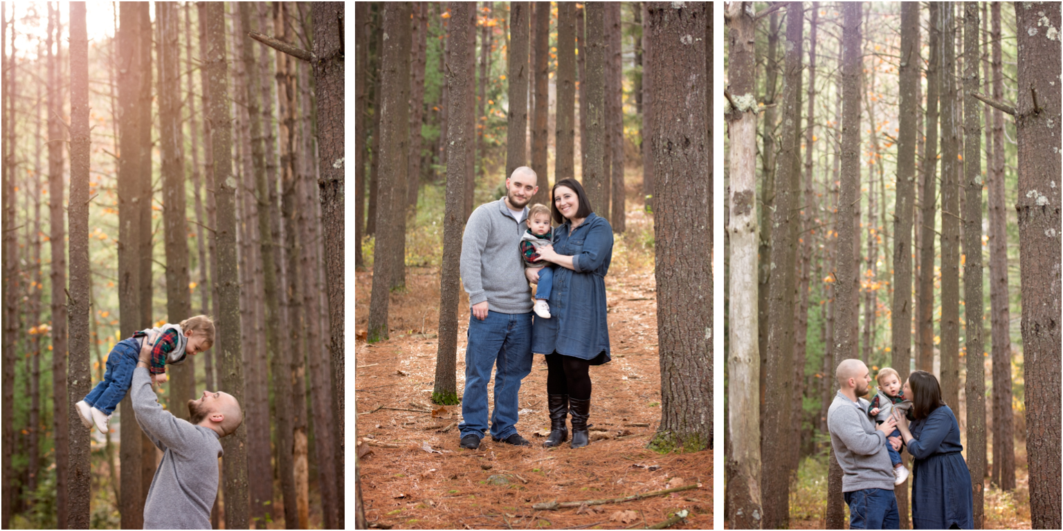 Pine creek Family photographer williamsport Jersey shore Tall pine trees