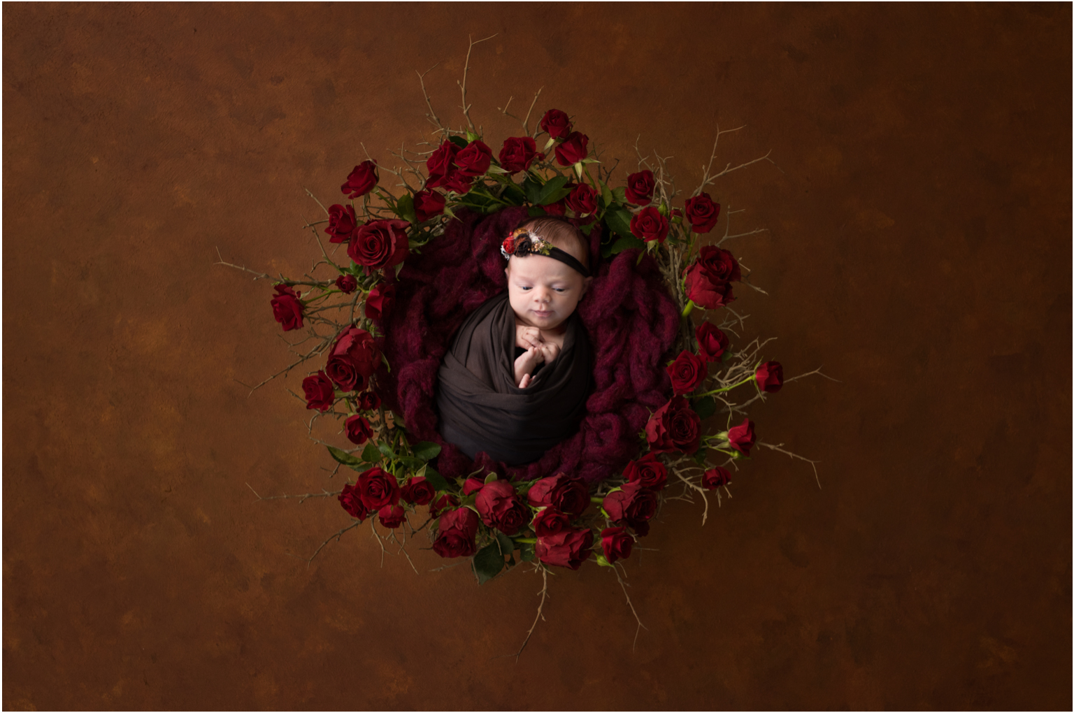 Baby Photography WIlliamsport pa rose wreath