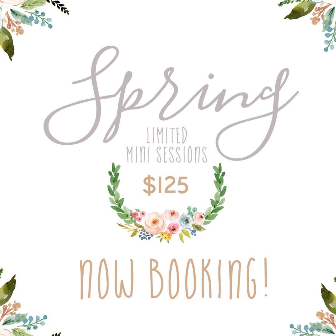 Spring Mini Sessions Williamsport pA