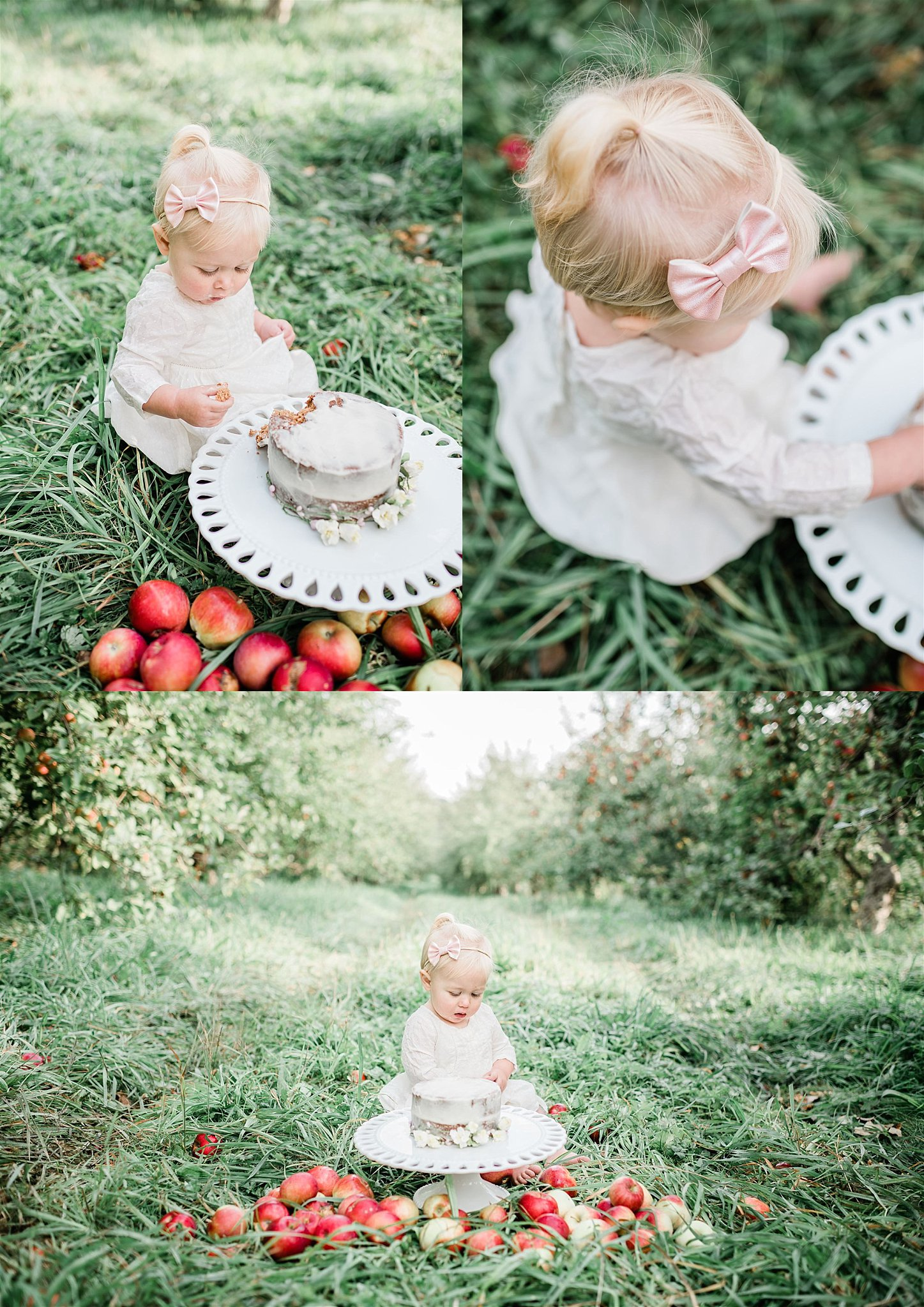apple orchard cake smash family photography williamsport pa