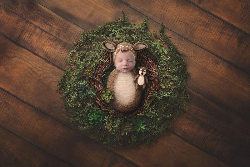 Newborn Digital Backdrop - Lauree Jane Photography, LLC