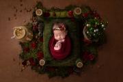 Avery Newborn-0002